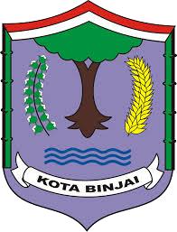 LPSE Kota Binjai